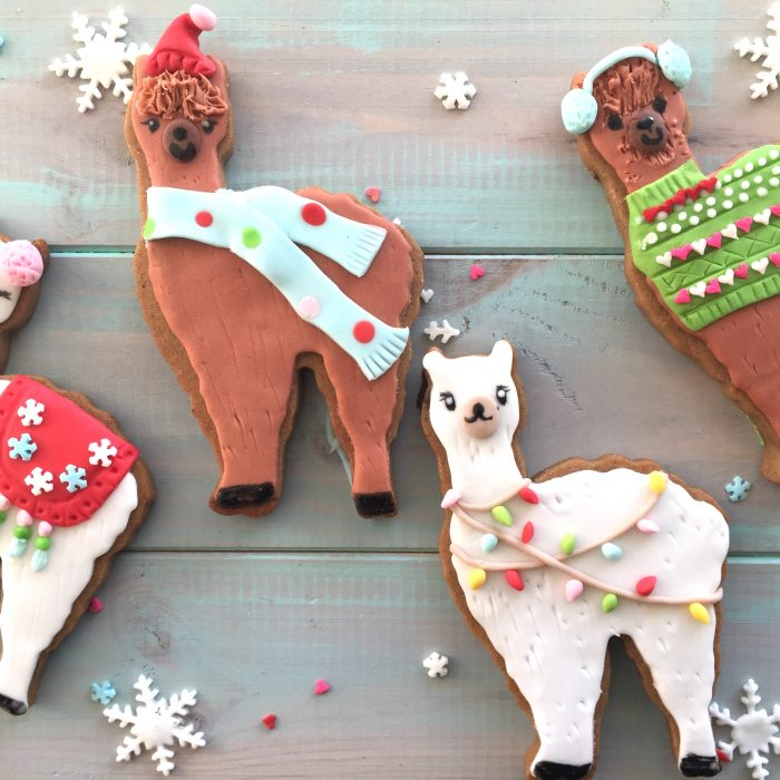 It's party season – even gingerbread alpaca cookies need to party!
